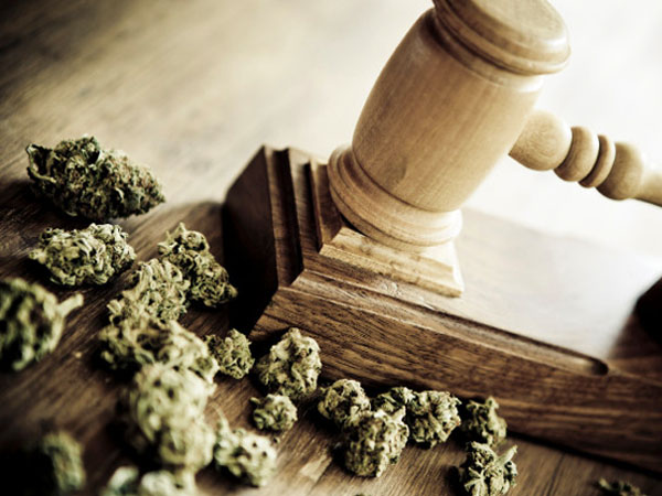Sparks Law Group - Cannabis Law